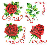 Design set with the hand drawn red roses — Stock Photo