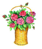 Basket with red roses — Stock Photo