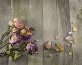 Vintage border with dried roses — Stock Photo