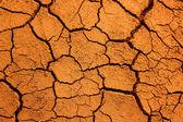 Dry soil texture background — Stock Photo