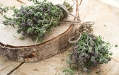 The dried thyme — Stock Photo