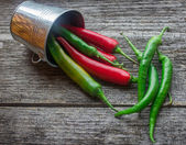 Colorful chili peppers — Stock Photo