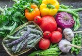 Bahçeden taze sebze — Stok fotoğraf