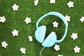 Headphones on grass with flowers — Стоковое фото