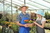 Female and male gardeners — Stock Photo