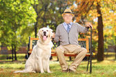 Gentleman sitting on a bench with dog — Stockfoto