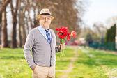 Senior male holding tulips in park — Stock Photo