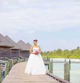 Nevěsta ve svatebních šatech — Stock fotografie