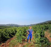 Young vintner standing at vineyard  — Stock Photo