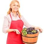 Female vintner holding basket — Stock Photo #45865373
