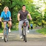 Happy couple biking in park — Stock Photo #45865771