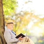 Senior man reading a book in park — Stock Photo