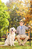 Gentleman on bench with dog — Stock Photo