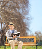 Senior reading book in park — Stock Photo