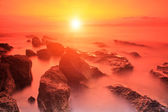 Rocks in Adriatic sea at sunset — Stockfoto