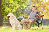 Senior on bench with dog — Stock Photo
