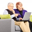 Mature couple looking at laptop — Stock Photo #45876837