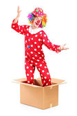 Clown coming out of cardboard box — Stock Photo