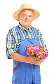 Mature gardener with holding flowers — Stock Photo
