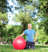 Male with an exercise ball in park — Foto Stock