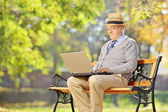 Senior man working on laptop in park — Stock Photo