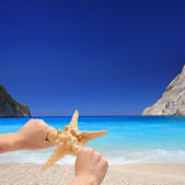 Person holding starfish — Stock Photo