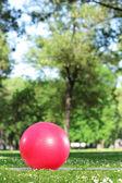 Červený míč pilates v parku — Stock fotografie