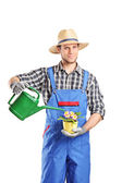 Male horticulturist watering plant — Stock Photo