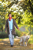 A boy and his dog walking in the park in autumn — Stock fotografie