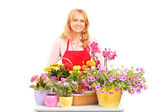 Mature female florist and flowers — Stock Photo