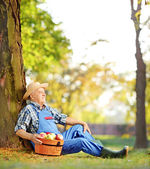 Male with basket of harvested apples — Stock Photo