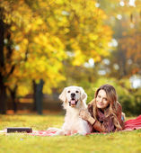 Female lying with dog in park — Stock Photo