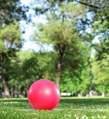 Red exercise ball in park — Stockfoto
