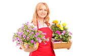 Female florist holding flowers — Stock Photo