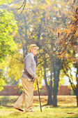 Gentleman walking with cane in park — Stock Photo