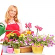 A beautiful female florist holding a can and watering flowers — Stock Photo #45881559