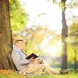 Senior man reading a book in park — Stock Photo
