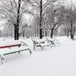 Benches covered with snow — Stock Photo #45885735