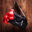 Sports bag and boxing gloves — Stock Photo #45886209
