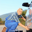 Mechanic changing car tyre on an open road — Stock Photo #45889677