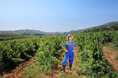Young vintner posing at vineyard  — Stock Photo