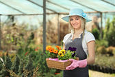 Female gardener holding flowers — Stock Photo