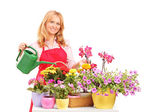 A beautiful female florist holding a can and watering flowers — Stock Photo