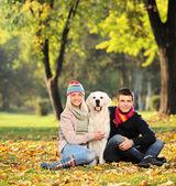 Man and woman hugging dog — Stock Photo