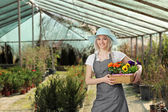 Female gardener with flowers — Stock Photo