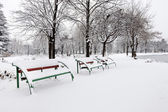 Benches covered with snow — Stock Photo