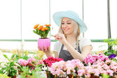 Female gardener examining flower — Stock Photo