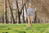 Senior gentleman walking in park — ストック写真