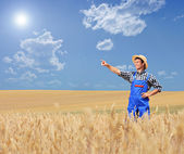 Farmer pointing in wheat field — 图库照片