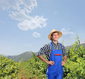 Male vintner posing at vineyard — Stock Photo